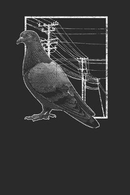 Pigeon With Electric Wire by Pigeon Publishing image