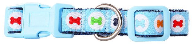 Pawise: Dog Collar - Blue/Medium (35-50cm/20mm)