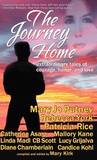 The Journey Home by Mary Jo Putney