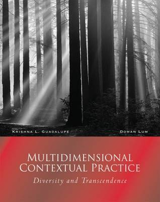 Multidimensional Contextual Practice: Diversity and Transcendence by Krishna L. Guadalupe image