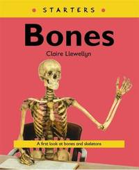 Starters: Bones by Claire Llewellyn image