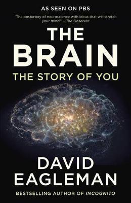The Brain by David Eagleman