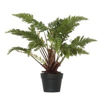 General Eclectic: Artificial Plant - Small Fern image
