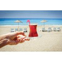 Tropic Tea - Flamingo Infuser image