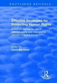 Effective Strategies for Protecting Human Rights