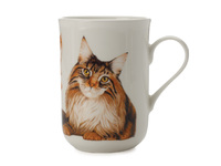 Maxwell & Williams - Cashmere Pets Mug - Maine Coon Cat (300ml)
