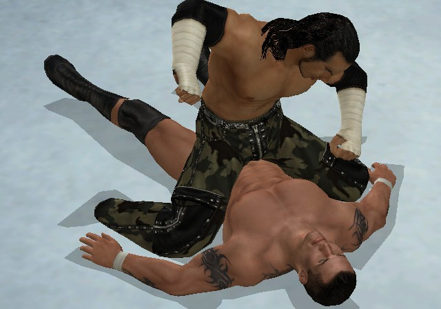 WWE SmackDown! vs. RAW 2009 for Wii image