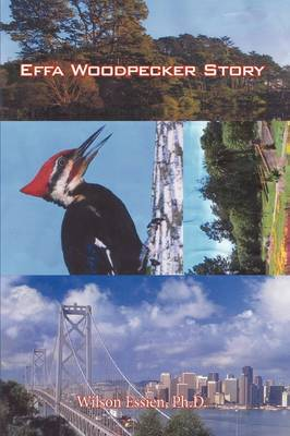 Effa Woodpecker Story by Ph.D. Wilson Essien image
