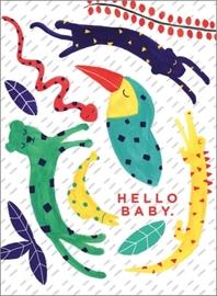 Carolyn Suzuki - Hello Baby
