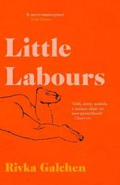 Little Labours by Rivka Galchen image