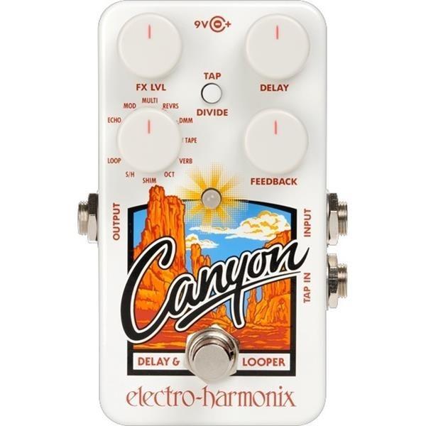 Electro Harmonix Canyon delay & looper