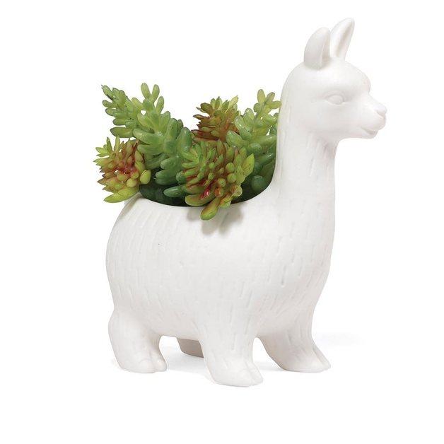 Kikkerland: Lloyd the Llama Planter