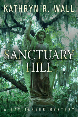 Sanctuary Hill by Kathryn R Wall image