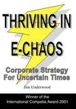 Thriving in E-Chaos by Sandra L. Smith
