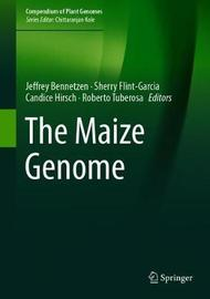 The Maize Genome