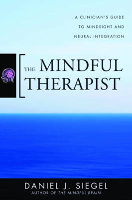 The Mindful Therapist by Daniel J. Siegel