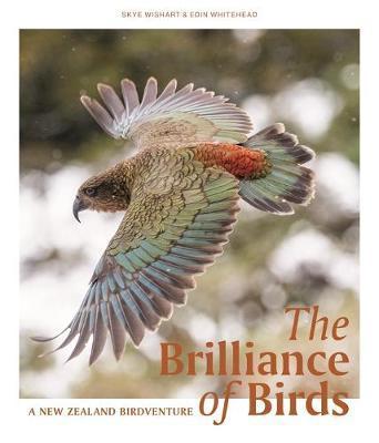 The Brilliance of Birds by Skye Wishart image