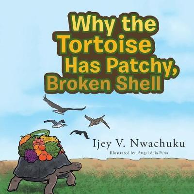 Why the Tortoise Has Patchy, Broken Shell by Ijey Nwachuku image