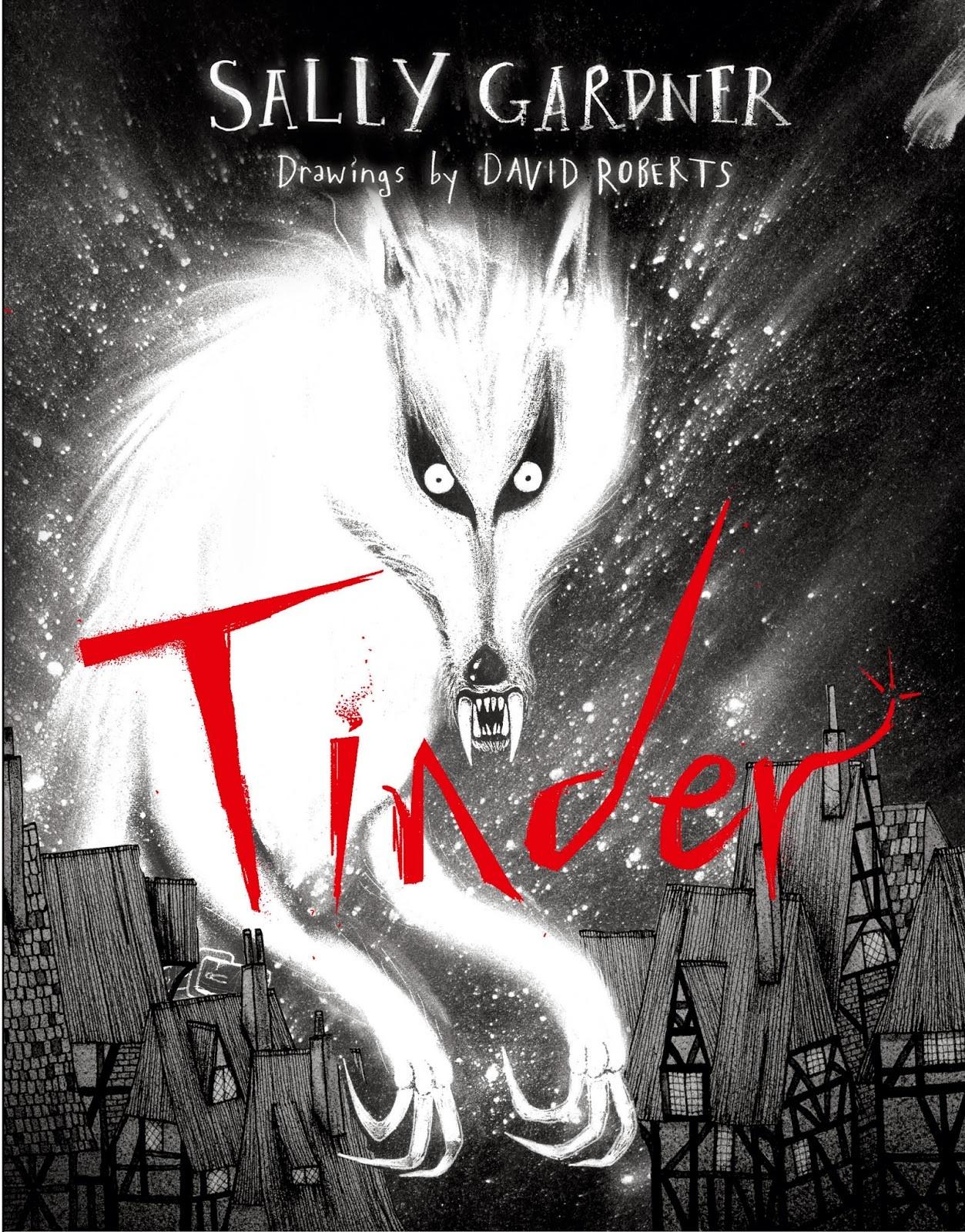 Tinder by Sally Gardner image