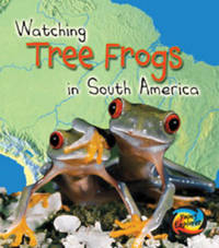 Tree Frogs in South America by Elizabeth Miles