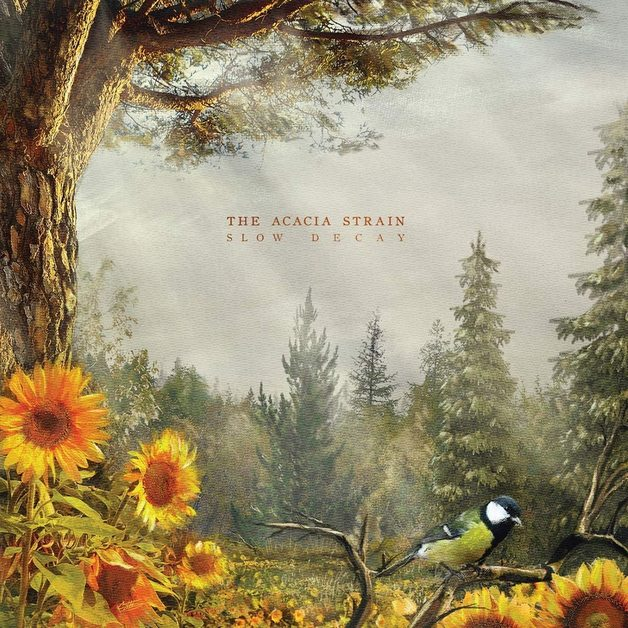 Slow Decay by The Acacia Strain