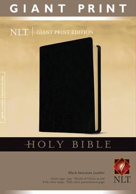 Giant Print Bible-NLT