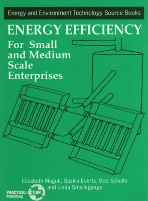 Energy Efficiency for Small and Medium Enterprises by Elizabeth Muguti