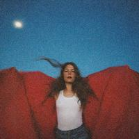 Heard It In A Past Life by Maggie Rogers