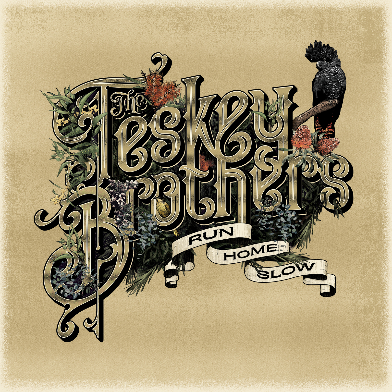 Run Home Slow by The Teskey Brothers image