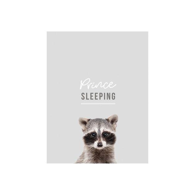 Splosh: Baby Prince Sleeping Door Plaque