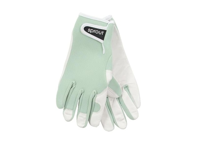 Annabel Trends: Sprout Goatskin Gloves - Sage Green