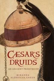 Caesar's Druids by Miranda Aldhouse Green image