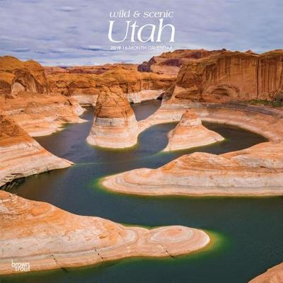 Utah Wild & Scenic 2019 Square by Inc Browntrout Publishers