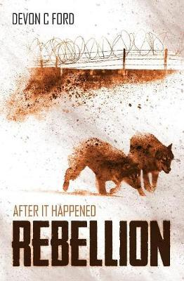 After It Happened by Devon C Ford