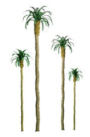 "JTT Scenic Palm Trees 3"" (4pk) - N Scale"