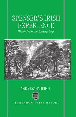 Edmund Spenser's Irish Experience by Andrew Hadfield image