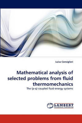 Mathematical Analysis of Selected Problems from Fluid