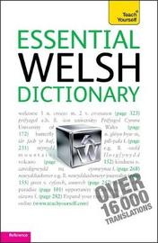Essential Welsh Dictionary: Teach Yourself by Edwin C Lewis