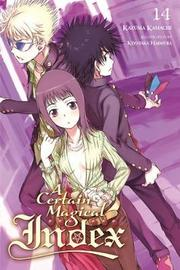 A Certain Magical Index, Vol. 14 (light novel) by Kazuma Kamachi