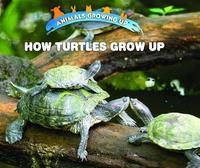 How Turtles Grow Up by Linda Bozzo