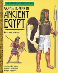 Egyptian Times by Anne Millard image