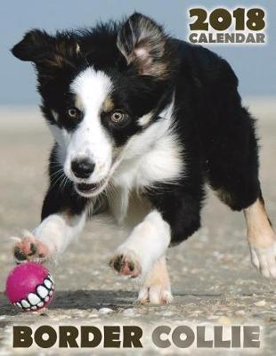Border Collie 2018 Calendar Over The Wall Dogs Book In Stock