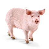 Schleich - Pig