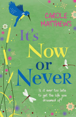 It's Now or Never by Carole Matthews image