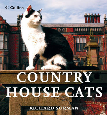 Country House Cats by Richard Surman image