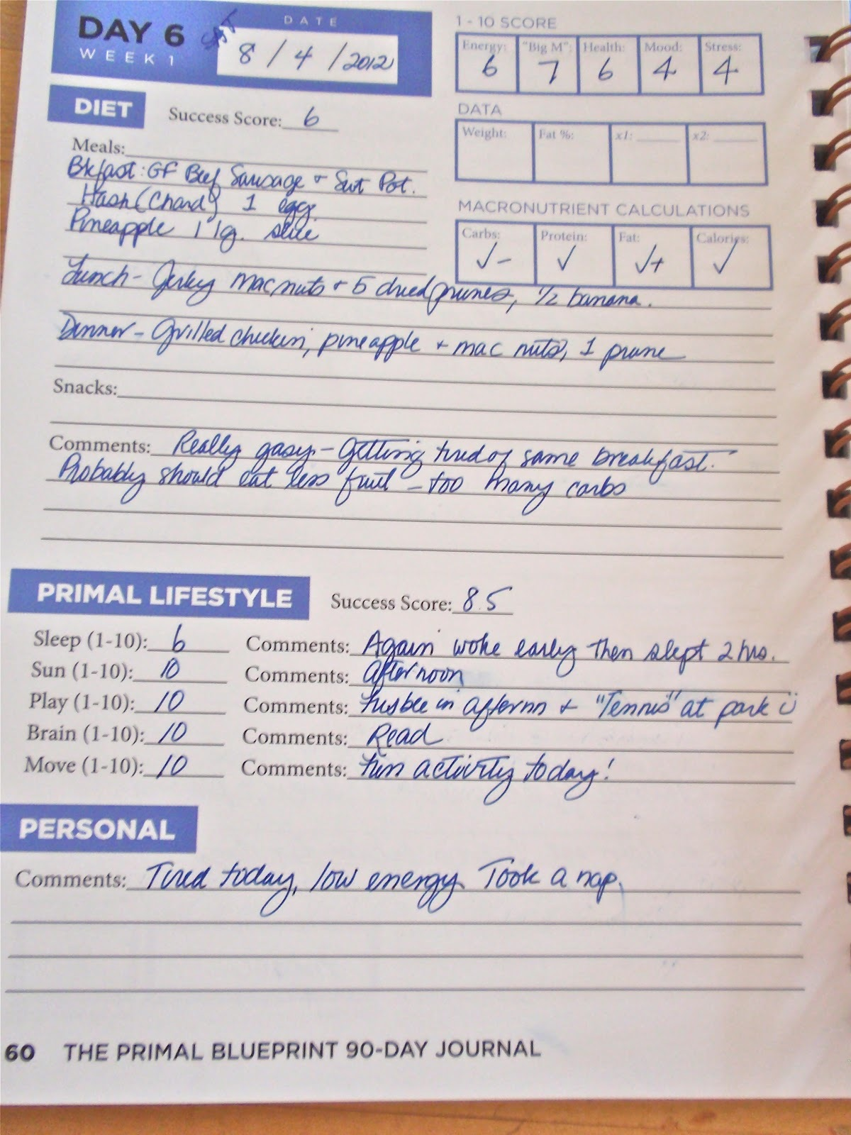 Primal blueprint 90 day journal mark sisson book in stock buy the primal blueprint 90 day journal a personal experiment n1 malvernweather Choice Image