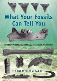 What Your Fossils Can Tell You image