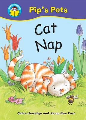 Cat Nap by Claire Llewellyn image
