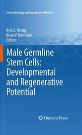 Male Germline Stem Cells: Developmental and Regenerative Potential