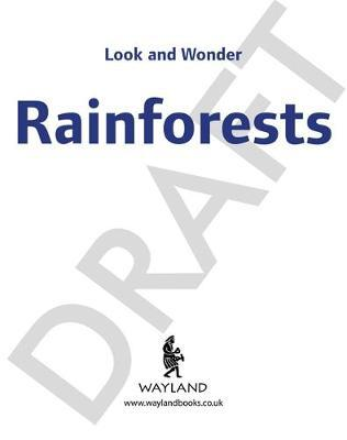 Look and Wonder: Incredible Rainforests by Kay Barnham